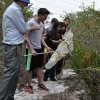 Biology students learn about the scrub ecosystem.