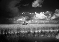 Visions of Florida: The Photographic Art of Clyde Butcher